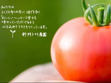 株式会社新門トマト農園-8
