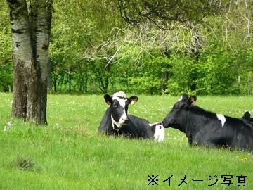 弟子屈町×酪農/個人【1510】-2