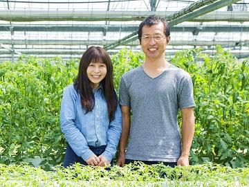 株式会社新門(しんかど)トマト農園1