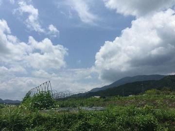 御所市×野菜/法人【1743】-7