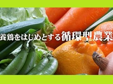 出水市×野菜・養鶏/法人【1355】-2