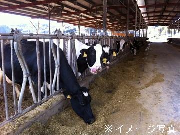 苫前町×酪農/法人【1329】-1