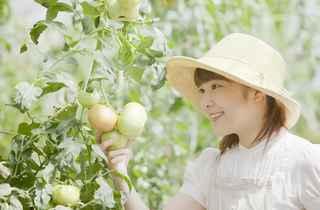 農業就業人口の減少が止まらない!若者が農業に興味を持つポイントはある?