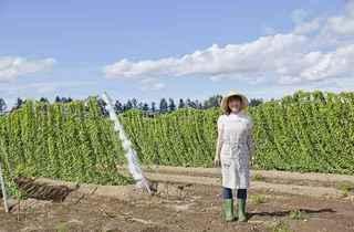 新規就農者へ贈る!農業を始める前に知っておきたい知識集
