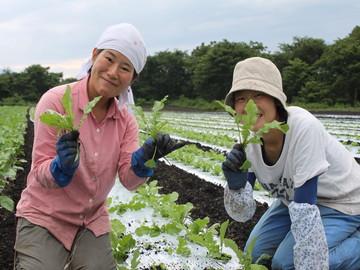 有限会社岩田農園-5