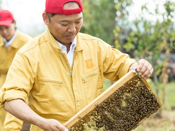 株式会社蜂の郷にしおか-5