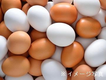 茨城県・福島県×養鶏/法人【1231】-1