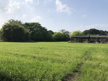 本部(ほんぶ)農場-6