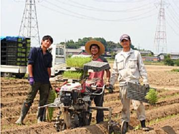 深谷市×野菜/法人【1115】-2