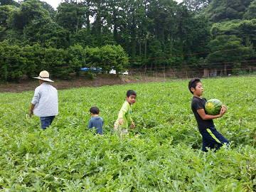 楢崎農園-4