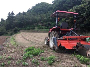 楢崎農園-6