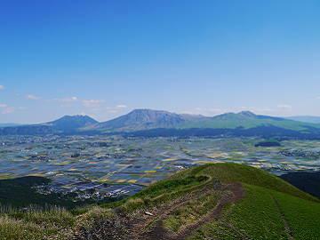 山本農園-8