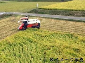 明和町×稲作/個人【6151】-1