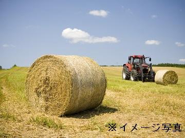 浜中町×酪農/個人【0928】-1