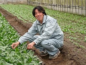 広島県世羅町農業研修生募集【研修生】-2