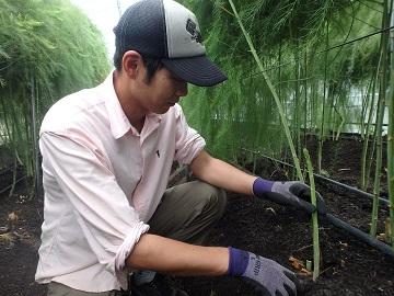 広島県世羅町農業研修生募集【研修生】-3