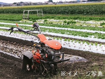 菊川市×露地野菜/法人【0682】-1