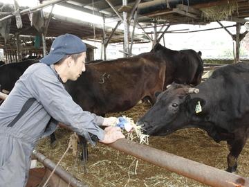 名張市×肉牛/法人【0634】