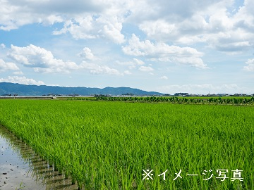 海津市×稲作/法人【0595】-2