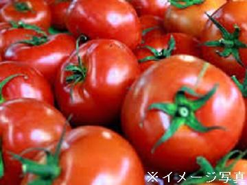 えひめ中央農業協同組合(伊予市)-4
