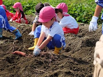 株式会社いけちゃん農園-6