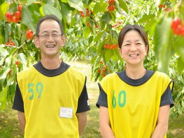 北海道芦別市×果樹/法人【0548】-3