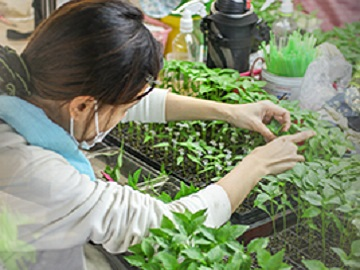 西日本ナーサリー耕業株式会社-4
