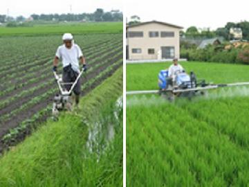 農事組合法人e-FARM久留米-1