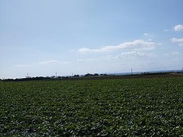 小原農園-2