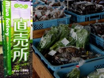 株式会社miwa factory-4