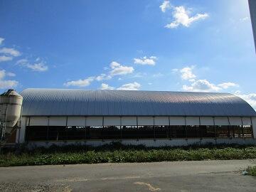 橋本牧場-6