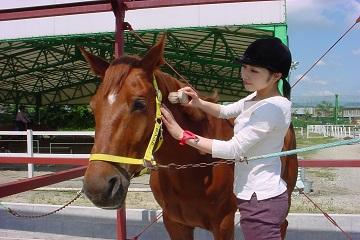 滋賀県東近江市×乗馬クラブ/法人【5762】