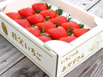 SweetDiary株式会社-3