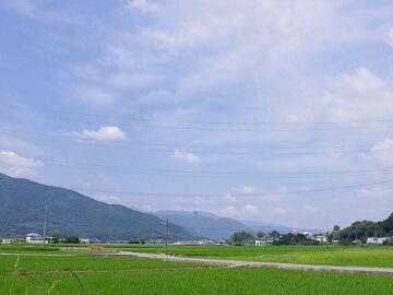 はなみち農園-8