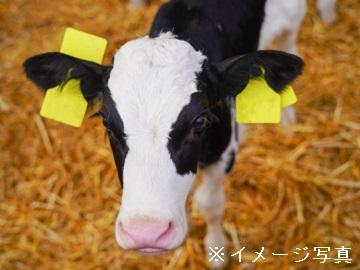 幕別町×酪農/個人【0363】-1