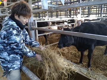 津市×肉牛/法人【0293】-1