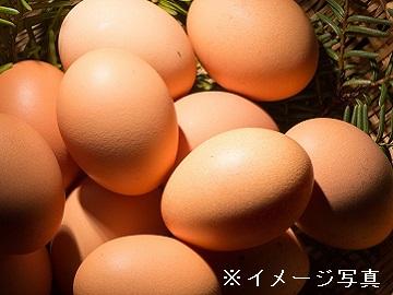 雫石町×酪農・養鶏/法人【0298】-2