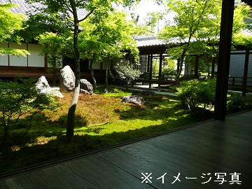 右京区×造園/法人【0280】-1