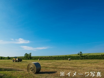 江別市×酪農/個人【0250】-1