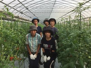 増山農園-4