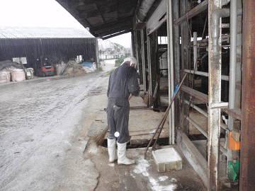 糸島地区酪農ヘルパー利用組合-1