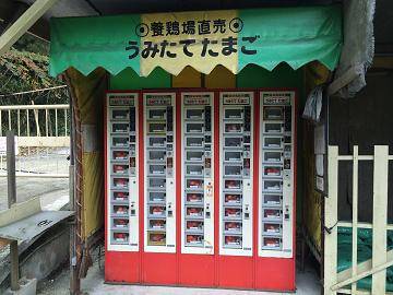 有限会社石坂養鶏-6