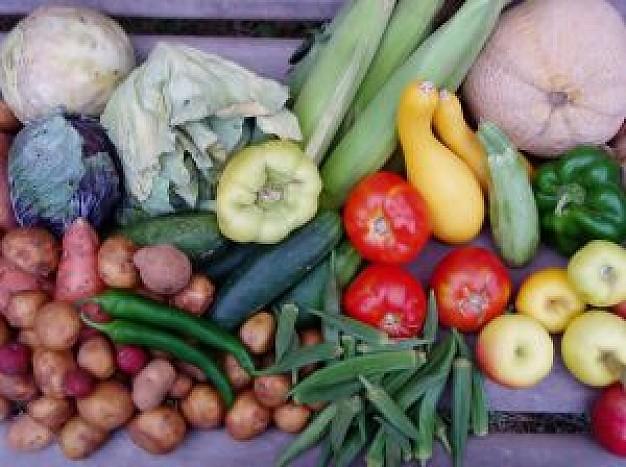 食の安全から考える日本の農業①
