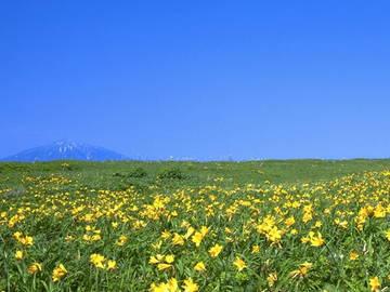 北海道豊富町×酪農/法人【6512】-2