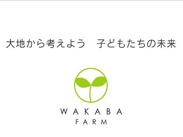 若葉農園-3