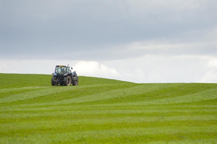 農業のビジネス化