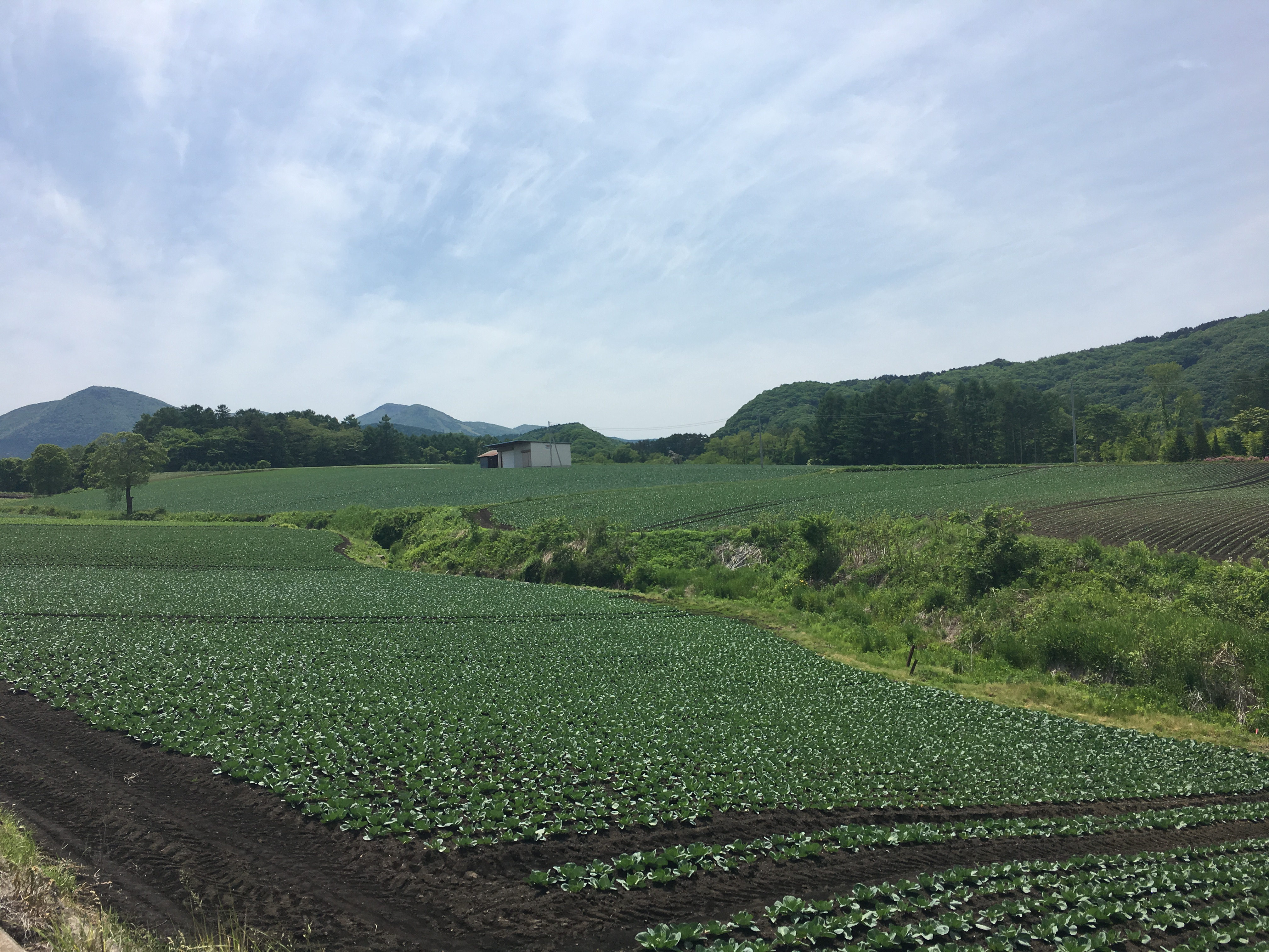 田舎で農業を始める際に気をつけるべきこと