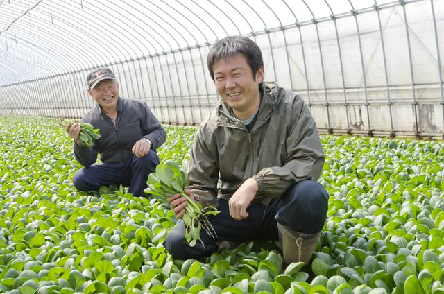 農業が高齢化している理由について