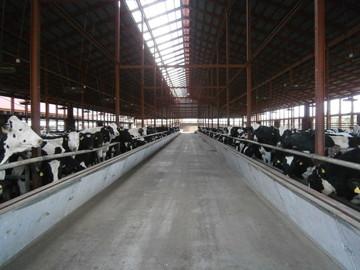 広野肉牛生産組合有限会社