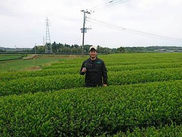 株式会社東八重製茶-8